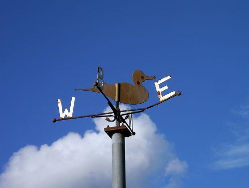 weather vane weathercock wind vane
