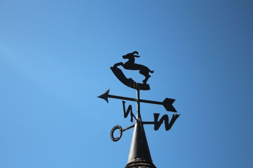 weather vane wind direction windrose