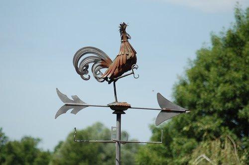 weathercock  weather vane  weathervane