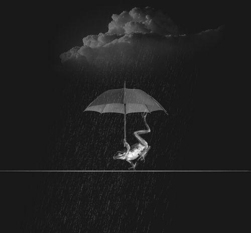 weatherman rain wet