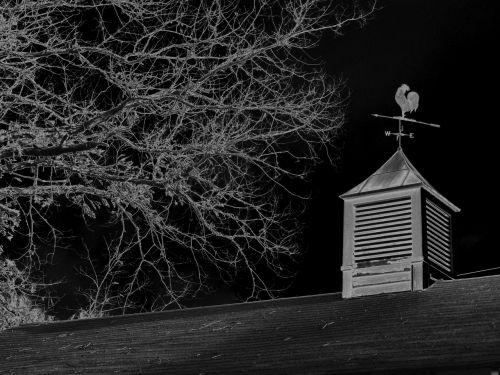 weathervane copula barn