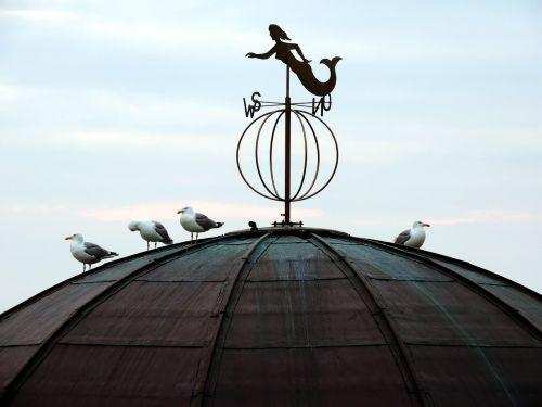 weathervane roof gulls
