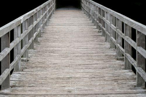 web wood boardwalk