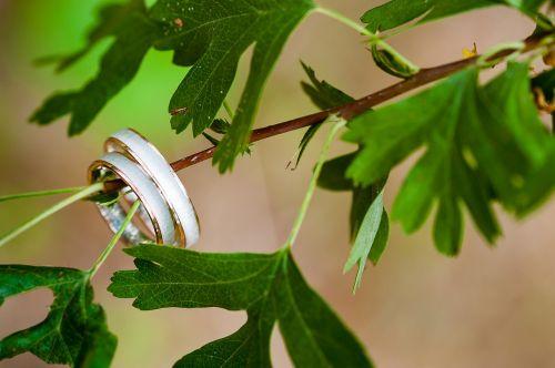 wedding rings tree