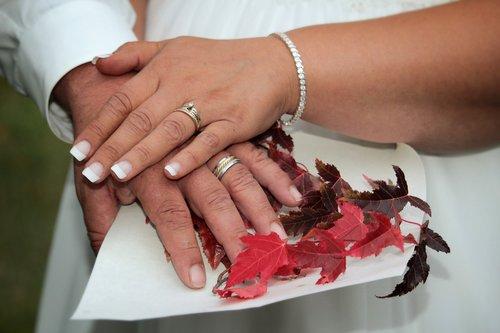 wedding  hands  rings