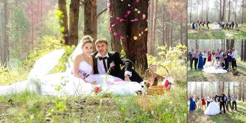 wedding bride the groom