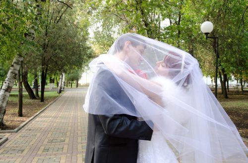 wedding kiss the groom