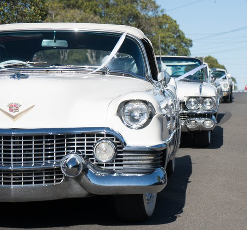 wedding cars  cadillac  white cars