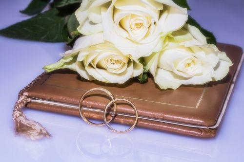 wedding rings wedding book marriage book