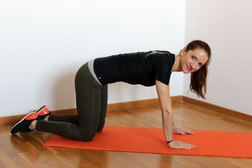weight loss gym exercise