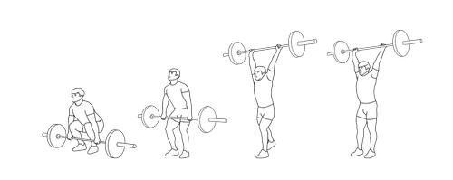 weightlifting  sports  muscle