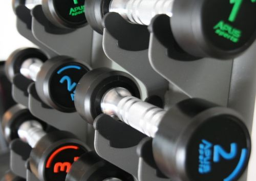 weights fitness gym