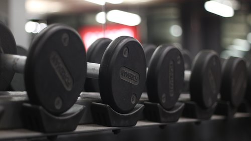weights  gym  dumbbell