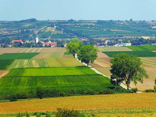 weinviertel  austria  hill land