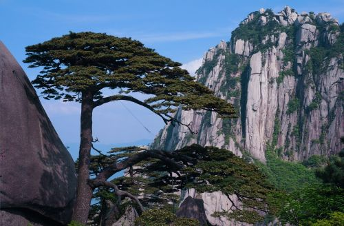 welcome song huangshan the celestial capital peak