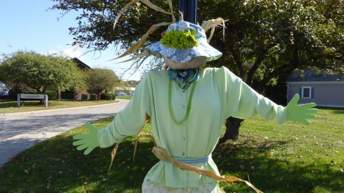 Well Dressed Scarecrow