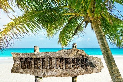 wellness  palm  beach