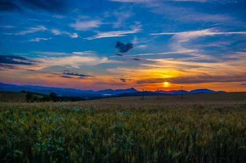 west sun evening