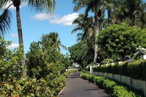 west palm beach florida path