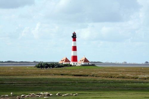 westerhever lighthouse  salt marshes  national park wadden sea
