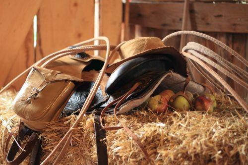 western saddle panniers