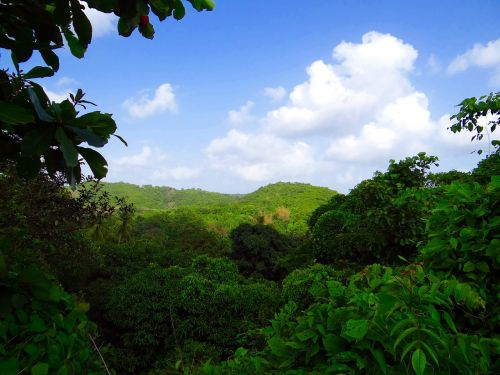 western ghats mountains nature