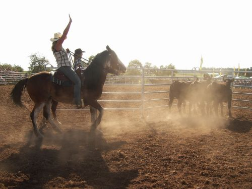 western riding ride horse