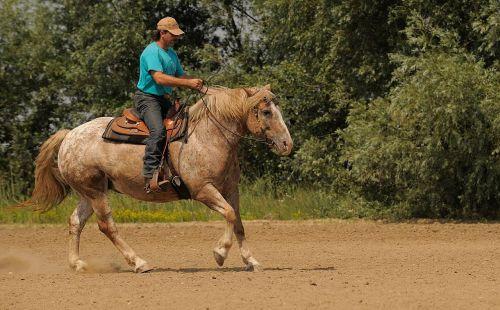 western riding ride cowboy