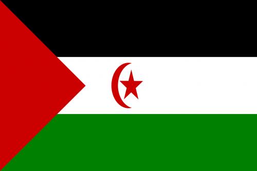 western sahara flag national flag