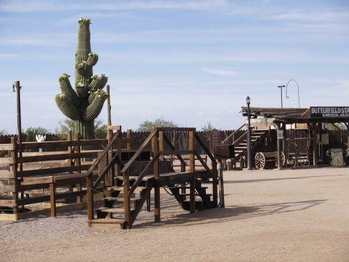 western still life lifestyle cactus