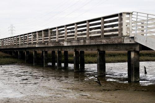 Wetland Pier