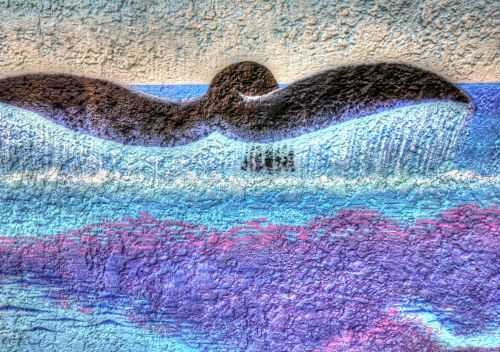 Whale Tail Art