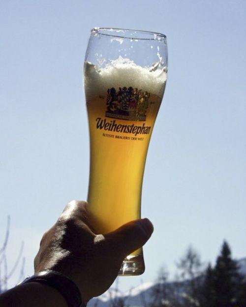 wheat beer glass back light