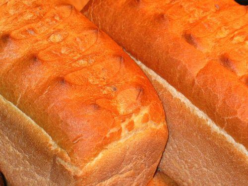 wheat bread bread food