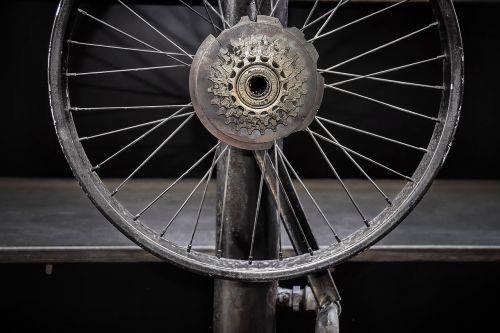 wheel spoke axis