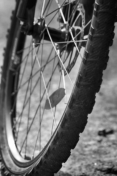 wheel  bike  spoke