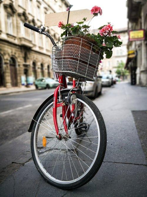 wheel  motorcycle  street