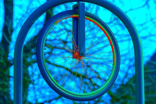 wheel  bicycle wheel  cycling