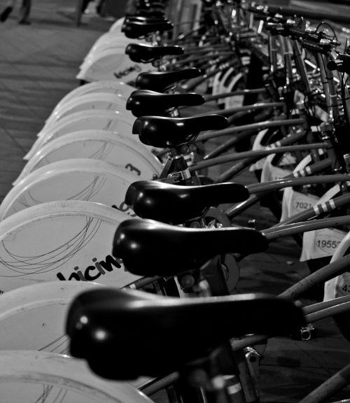 wheel saddle bicycle saddle