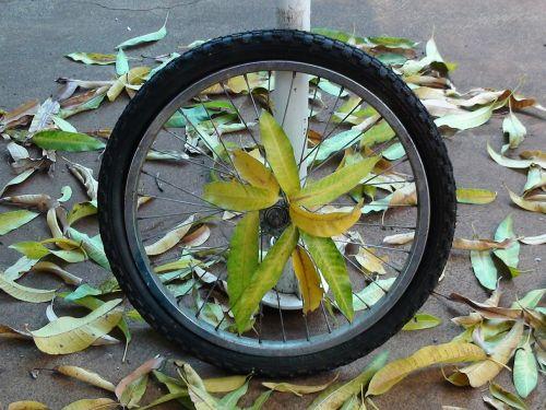 wheel bike stolen