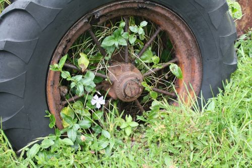 wheel weeds overgrown