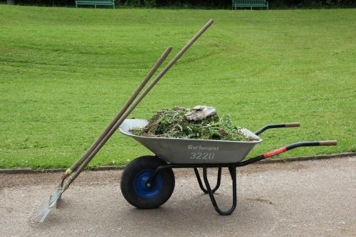 wheelbarrow garden gardening