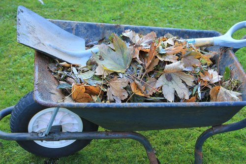 wheelbarrow  tools  garden