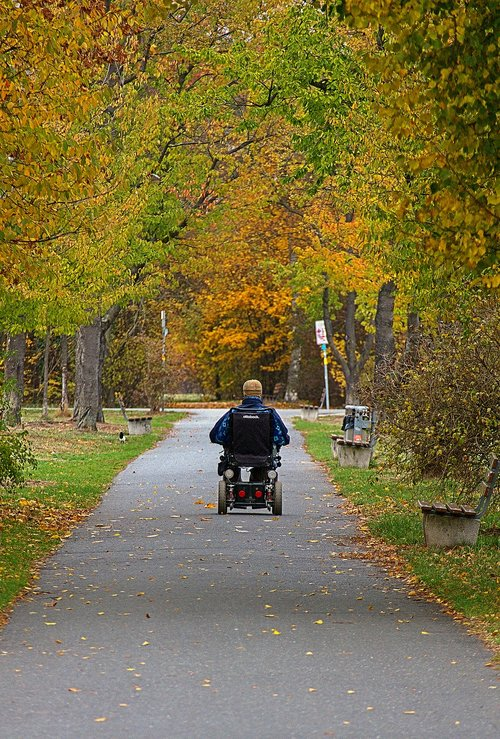 wheelchair  autumn  park
