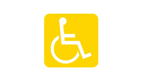 wheelchair users impairment disability