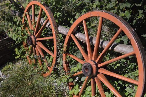 wheels wheel nature