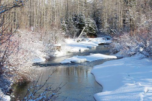 whistler creek river