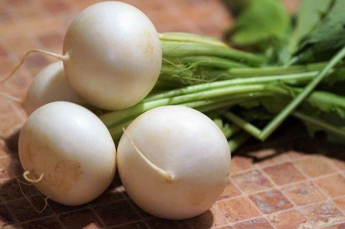 white radish turnip