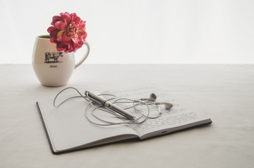 white earbuds journal