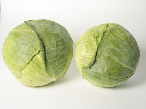 white  cabbage  greens